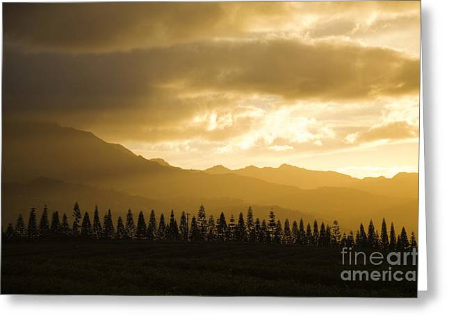 Amazing Sunset Greeting Cards - Sunset Over Kaala Mountai Greeting Card by Dana Edmunds - Printscapes