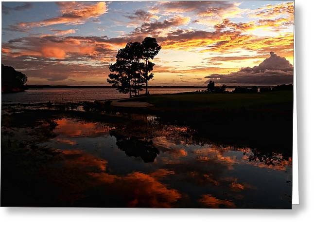 Toledo Bend Greeting Cards - Sunset Reflection Greeting Card by Judy Vincent