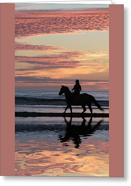 Ocean Mammals Greeting Cards - Sunset Reflections D3264 Greeting Card by Wes and Dotty Weber