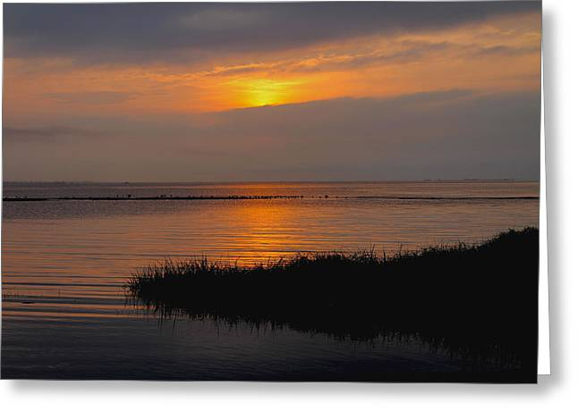 Beach Photography Greeting Cards - Sunset Reflections Greeting Card by Diane Murphy