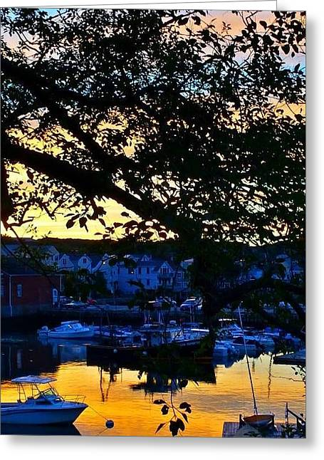 Reflections Of Sky In Water Greeting Cards - Sunset Reflections I Greeting Card by Harriet Harding