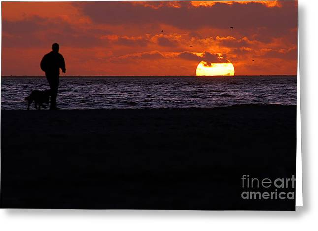 Bruster Greeting Cards - Sunset Run Greeting Card by Clayton Bruster