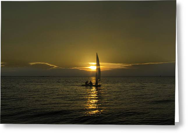 Yellow Sailboats Greeting Cards - Sunset Sail Greeting Card by Pete Federico