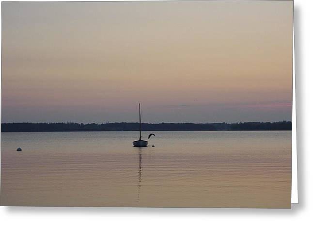 Sunset Sailing Greeting Card by Kelly Mezzapelle