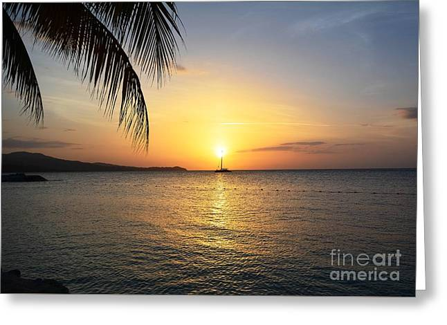 Yellow Sailboats Greeting Cards - Sunset Sailing Greeting Card by Lisa Kilby