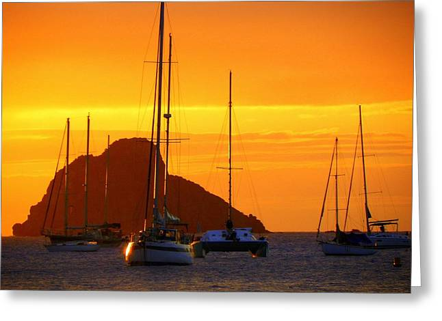 Yellow Sailboats Greeting Cards - Sunset Sails Greeting Card by Karen Wiles
