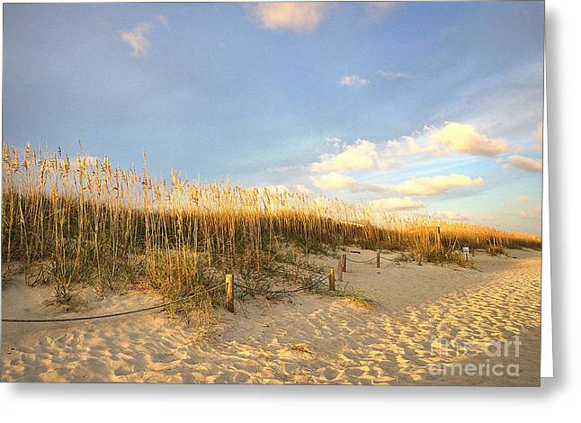 Ocean Art Photos Greeting Cards - Sunset Sea Oats Greeting Card by Shelia Kempf