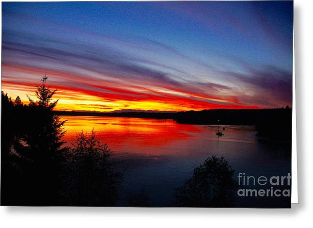 Yellow Sailboats Greeting Cards - Sunset Greeting Card by Sean Griffin
