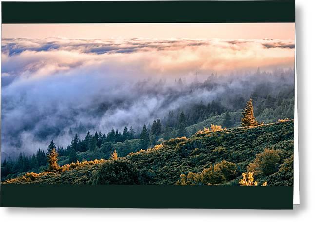 Marin County Greeting Cards - Sunset Shroud Greeting Card by Dan Shehan