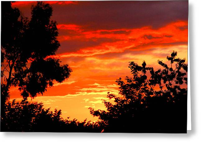 Sunset Sky Greeting Card by Duke Brito