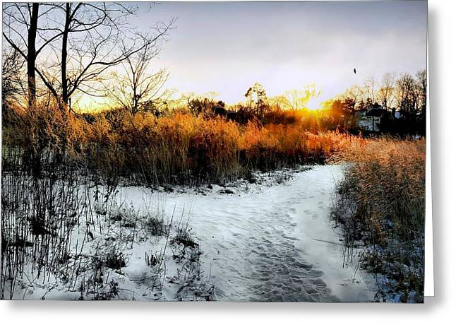 Connecticut Winter Greeting Cards - Sunset Snow Steps Greeting Card by Diana Angstadt