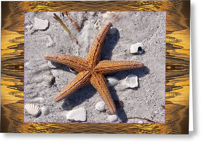 Anna Maria Island Greeting Cards - Sunset Starfish Greeting Card by Bell And Todd