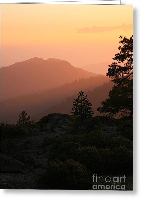 Sequoia National Park Greeting Cards - Sunset Greeting Card by Timothy Johnson