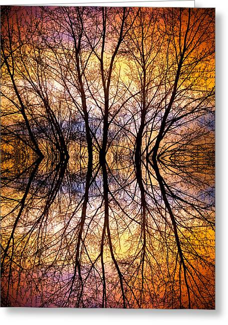 Sunset Prints Greeting Cards - Sunset Tree Silhouette Abstract 1 Greeting Card by James BO  Insogna