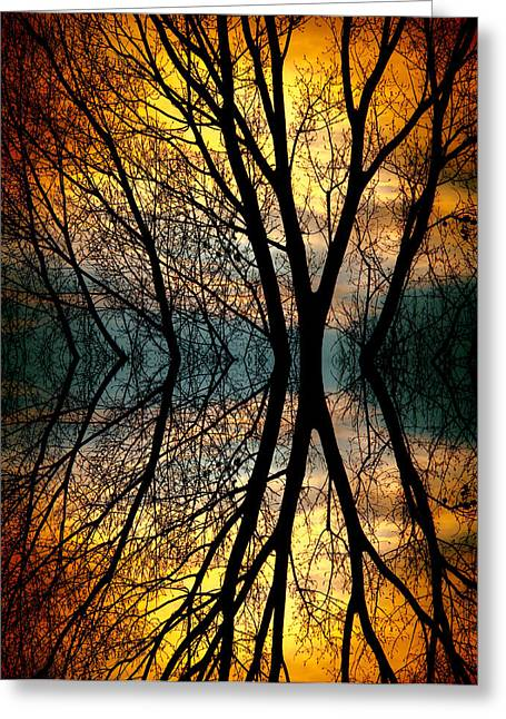 Longmont Greeting Cards - Sunset Tree Silhouette Abstract 3 Greeting Card by James BO  Insogna