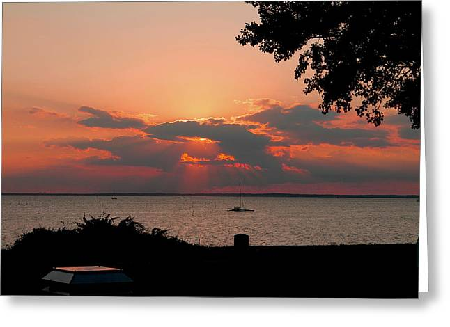 Matting Greeting Cards - Sunset View Greeting Card by Diane Murphy