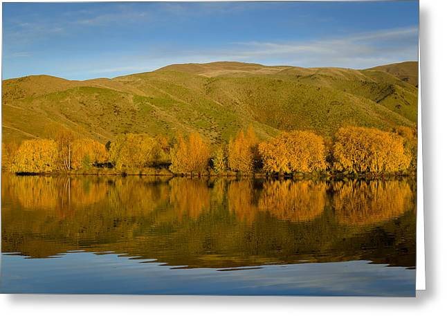 Willow Lake Greeting Cards - Sunset Wairepo Arm Greeting Card by Robert Green