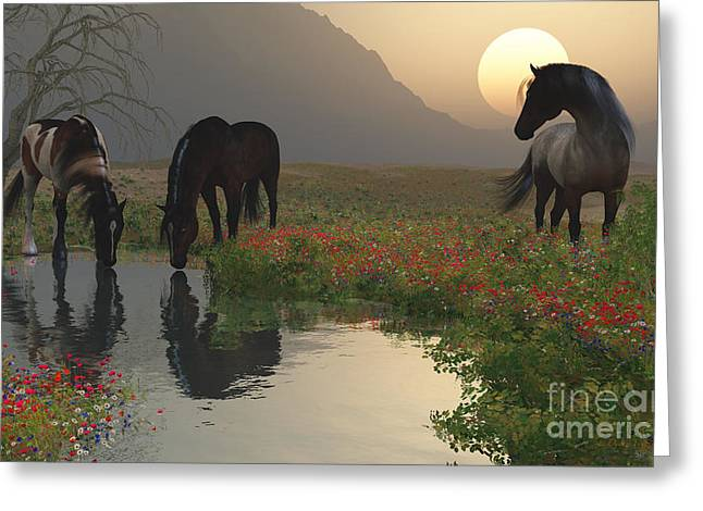 Stream Digital Greeting Cards - Sunset With Horses by the Stream Greeting Card by Diana  Voyajolu