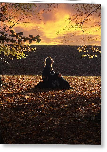 Pensive Greeting Cards - Sunset Greeting Card by Wojciech Zwolinski