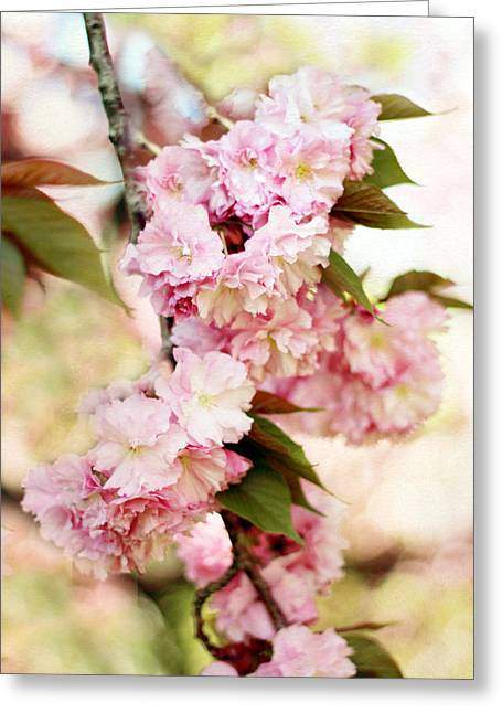 Cherry Blossom Tree Greeting Cards - Sunshine Blossom Greeting Card by Jessica Jenney