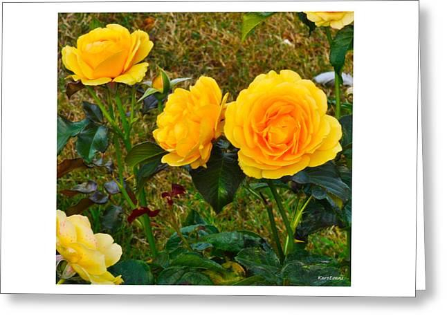 Sunshine Greeting Card by Karo Evans