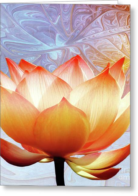 Lotus Flowers Greeting Cards - Sunshine Lotus Greeting Card by Photodream Art