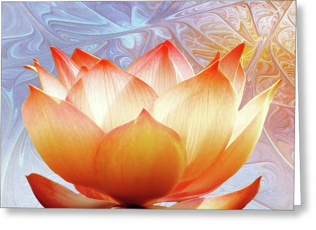 Sunshine Lotus Greeting Card by Photodream Art