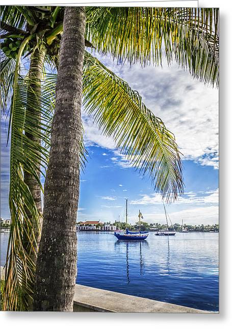 Sailboats In Harbor Greeting Cards - Sunshine Sailing Greeting Card by Debra and Dave Vanderlaan