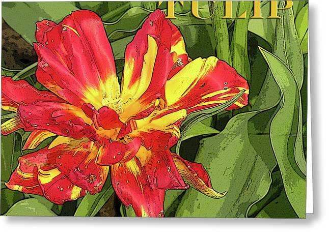 Digital Media Greeting Cards - Sunsplashed Greeting Card by Bonnie Bruno