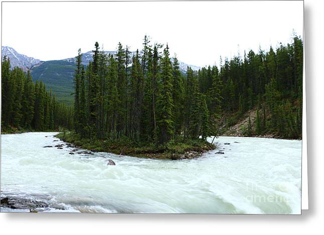 Nature Scene Greeting Cards - Sunwapta Falls Greeting Card by Christiane Schulze Art And Photography