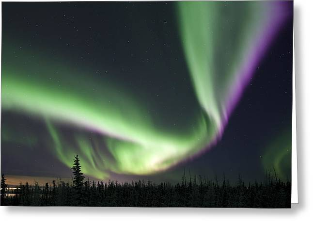 Northernlights Greeting Cards - Super Aurora Greeting Card by Ronald Lafleur