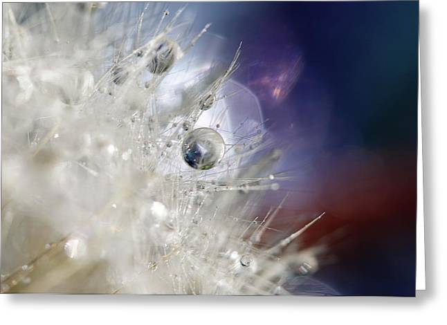 Supernova Greeting Card by Amy Tyler