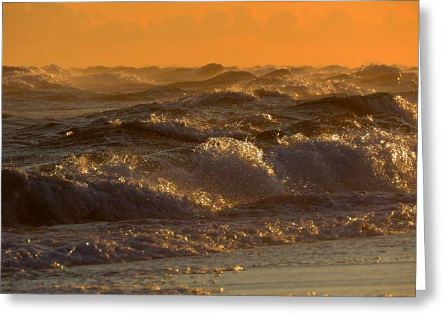 Fineartamerica Greeting Cards - Dawn Beauty Greeting Card by Dianne Cowen