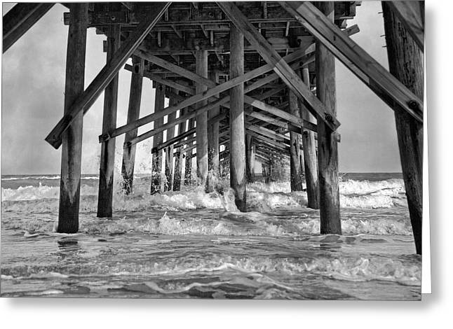 Surf City Greeting Cards - Jolly Roger Pier A Dreamers Day Greeting Card by Betsy C  Knapp