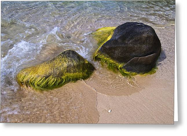 Virgin Gorda Greeting Cards - Surf Washing Over Algae Covered Rocks Greeting Card by Todd Gipstein