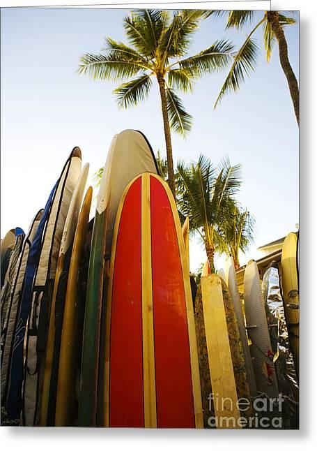 Setup Greeting Cards - Surfboards At Waikiki Greeting Card by Dana Edmunds - Printscapes