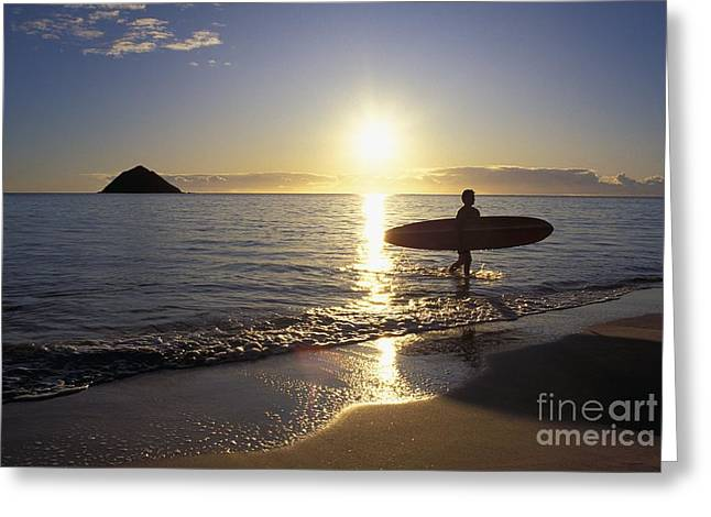 Surfing Art Greeting Cards - Surfer At Sunrise Greeting Card by Ali ONeal - Printscapes