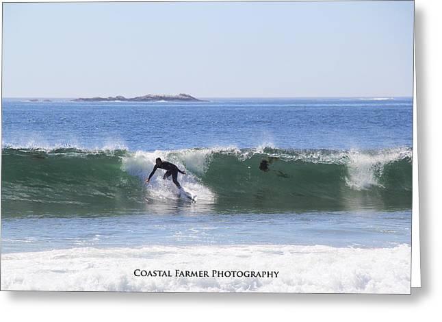 Coastal Maine Greeting Cards - Surfs Up Greeting Card by Becca Brann