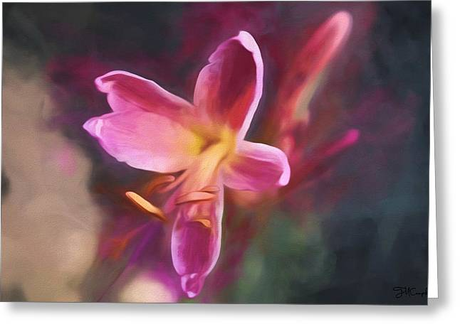 Surprise Greeting Cards - Surprise Lily Greeting Card by Theresa Campbell