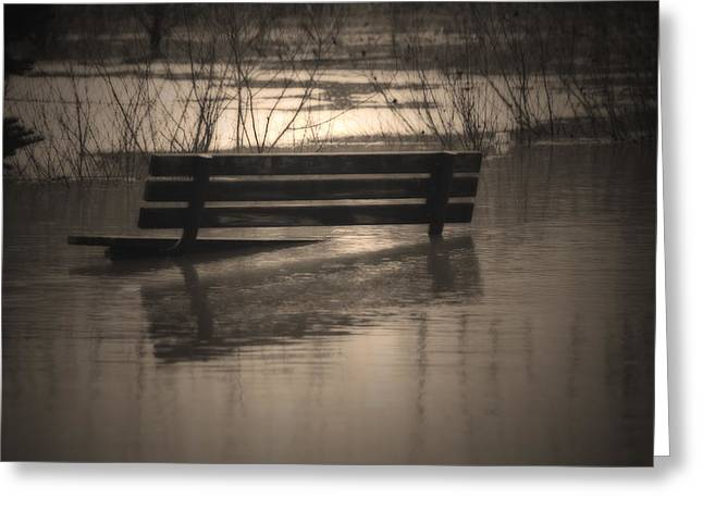 Spring Floods Greeting Cards - Surrender Greeting Card by Cathy  Beharriell