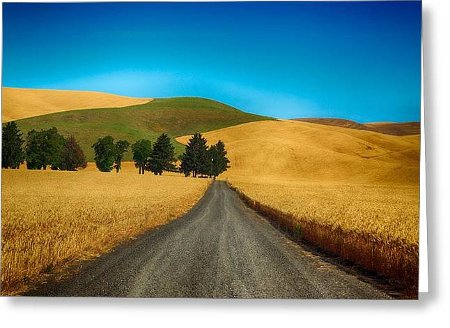 Prescott Greeting Cards - Surrounded by wheat Greeting Card by Lynn Hopwood