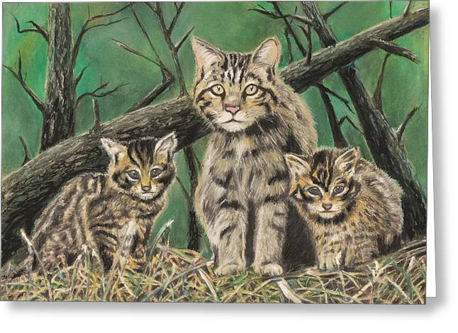 Cute Kitten Pastels Greeting Cards - Survival Greeting Card by Jeanne Fischer