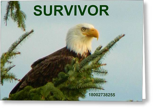 Anti Greeting Cards - Survivor With Hotline Greeting Card by Gallery Of Hope