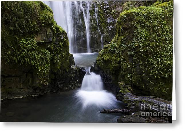 Beautiful Creek Greeting Cards - Susan Creek Falls Oregon 4 Greeting Card by Bob Christopher