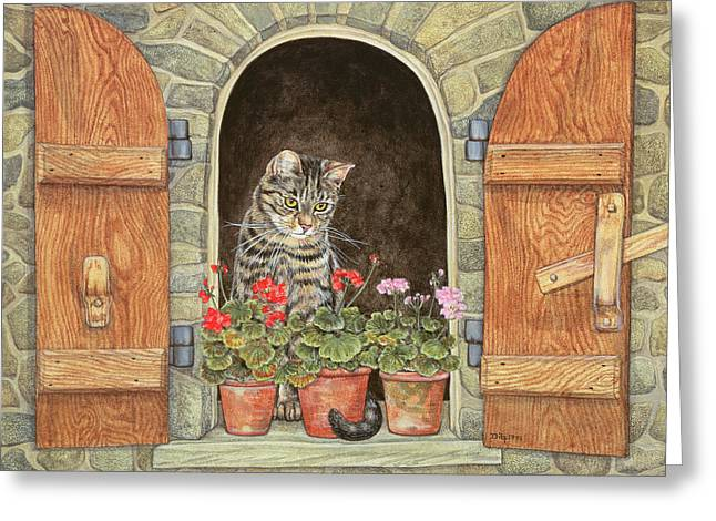 Susie's Window Greeting Card by Ditz