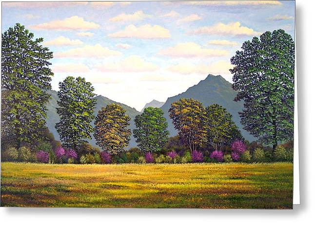 Sutter Buttes In Springtime Greeting Card by Frank Wilson