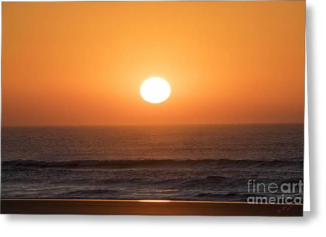 New England Ocean Greeting Cards - Suunyside UP Greeting Card by Linda Troski