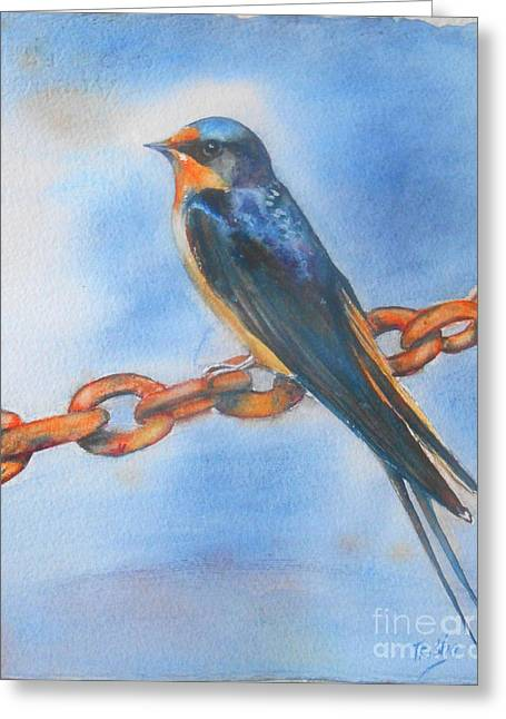 Barn Swallow Greeting Cards - Swallow Greeting Card by Patricia Pushaw