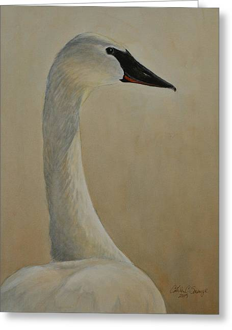 Swans... Greeting Cards - Trumpeter Swan Greeting Card by Cathleen Savage