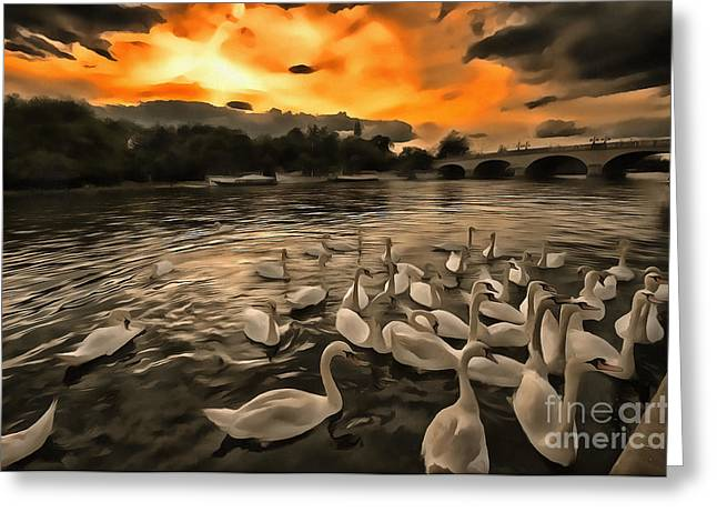 Gloaming Greeting Cards - Swan Gloaming Kingston U K Greeting Card by Jack Torcello